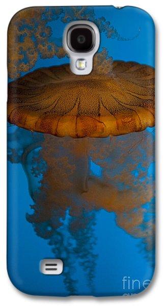 South American Sea Nettle Galaxy S4 Case by Jason O Watson