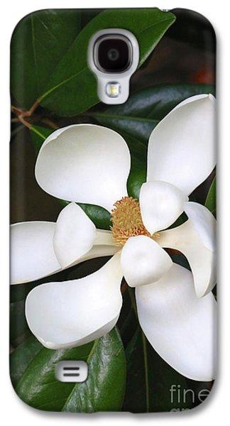 Southern Charm Magnolia Grandiflora Galaxy S4 Case by Carol Groenen