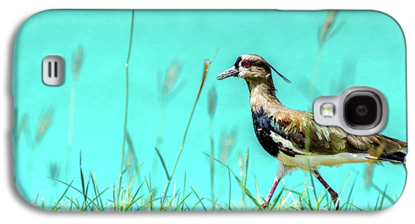Southern Lapwing Galaxy S4 Case