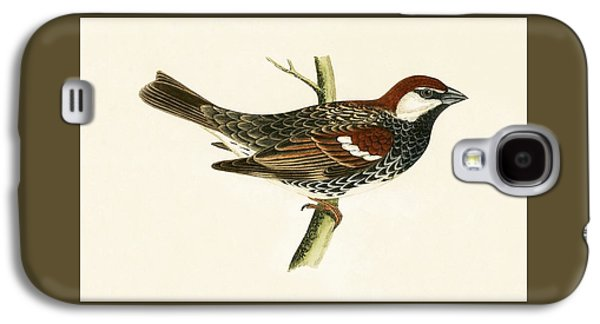 Spanish Sparrow Galaxy S4 Case