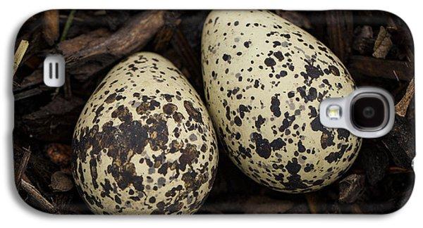 Speckled Killdeer Eggs By Jean Noren Galaxy S4 Case by Jean Noren