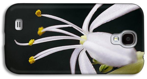 Spider Plant Flower Galaxy S4 Case