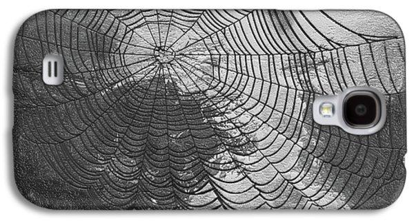 Spider Web Galaxy S4 Case by Jack Zulli