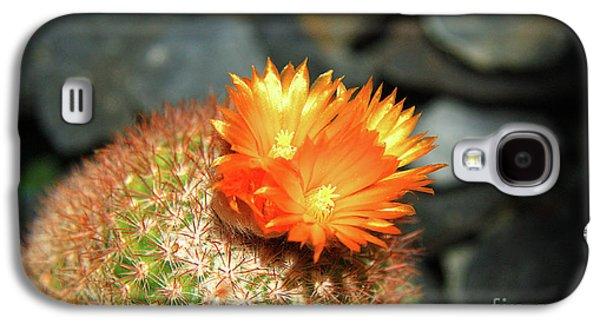 Spiky Little Cactus With Orange Flower Galaxy S4 Case