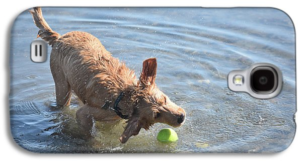 Splashing Yarmouth Toller Reaching For The Tennis Ball In Water Galaxy S4 Case by DejaVu Designs