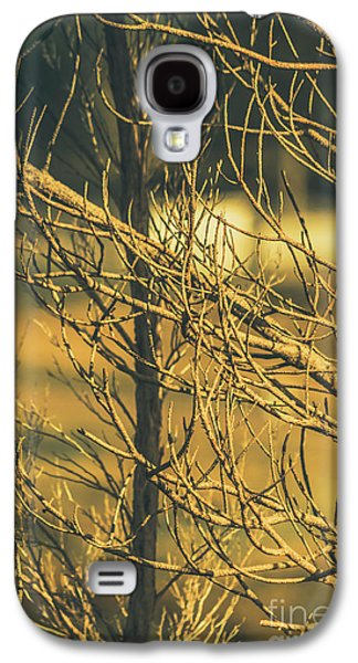 Spooky Country House Obscured By Vegetation  Galaxy S4 Case by Jorgo Photography - Wall Art Gallery