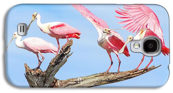Spoonbill Party Galaxy S4 Case by Mark Andrew Thomas