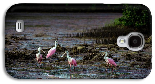 Spoonbill Galaxy S4 Case - Spooning Party by Marvin Spates