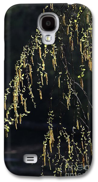 Spring Abstraction Galaxy S4 Case by Skip Willits
