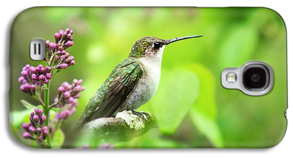 Spring Beauty Ruby Throat Hummingbird Galaxy S4 Case