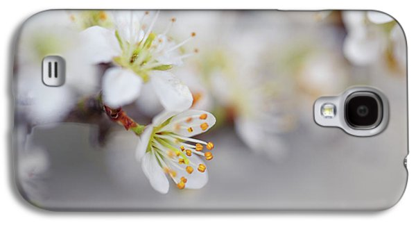 Spring Blossoms Galaxy S4 Case by Nailia Schwarz