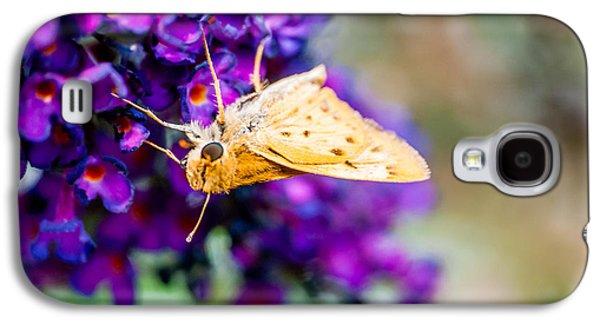 Spring Moth Galaxy S4 Case