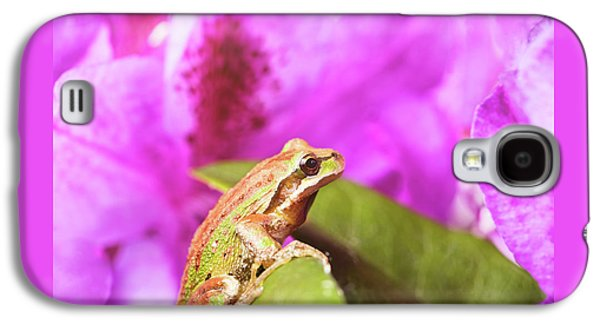 Spring Peeper Frog Inside Of Wild Flowers During Bright Daylight Galaxy S4 Case by Thomas Baker