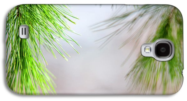 Spring Pine Abstract Galaxy S4 Case by Christina Rollo