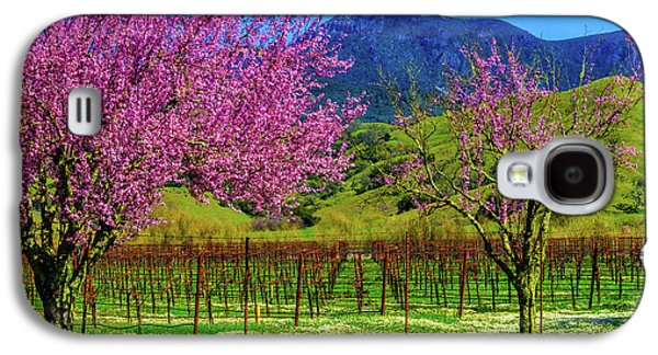 Spring Vineyards And Mt St Helena Galaxy S4 Case by Garry Gay