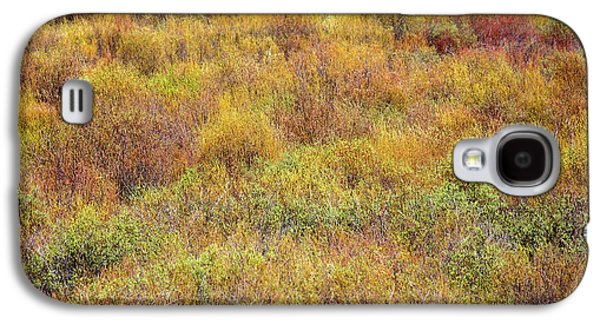 Spring Willows Galaxy S4 Case by Todd Klassy