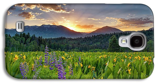 Spring's Delight Galaxy S4 Case by Leland D Howard
