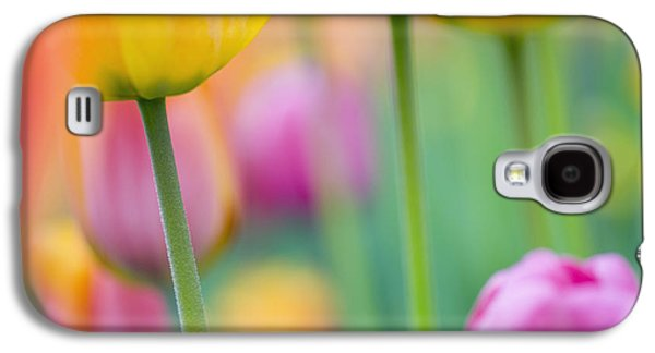 Springtime Galaxy S4 Case by Silke Magino