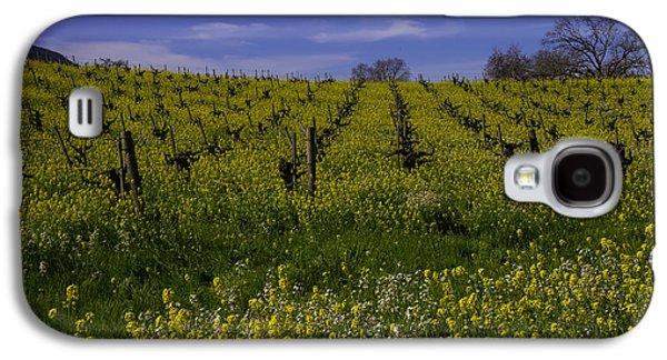 Springtime Vineyards Sonoma Galaxy S4 Case by Garry Gay