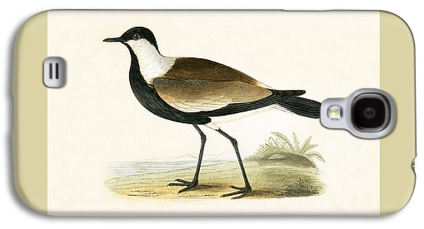 Spur Winged Plover Galaxy S4 Case
