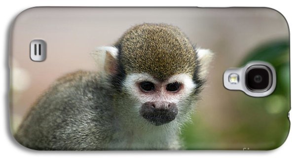 Squirrel Monkey Galaxy S4 Case by Amanda Elwell