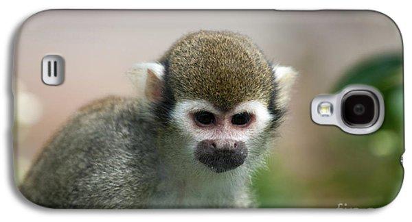 Squirrel Monkey Galaxy S4 Case by Amanda Elwell