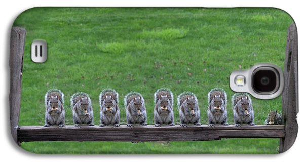 Squirrels Lined Up Galaxy S4 Case