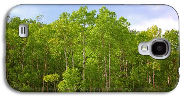 Stand Of Quaking Aspen Trees Galaxy S4 Case by Christine Till