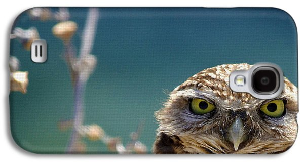 Owl Galaxy S4 Case - Standing My Ground Deux by Fraida Gutovich