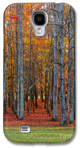 Standing Tall On The Natchez Trace Galaxy S4 Case by T Lowry Wilson