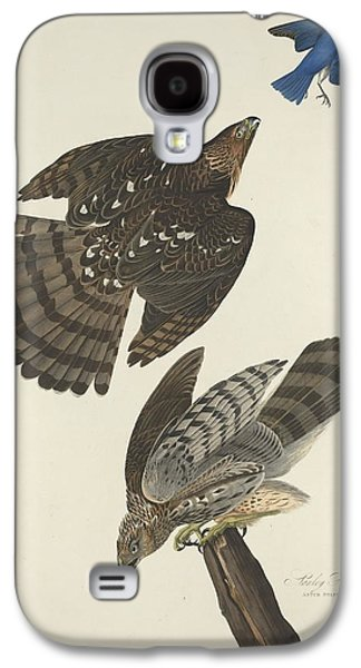 Stanley Hawk Galaxy S4 Case by Dreyer Wildlife Print Collections