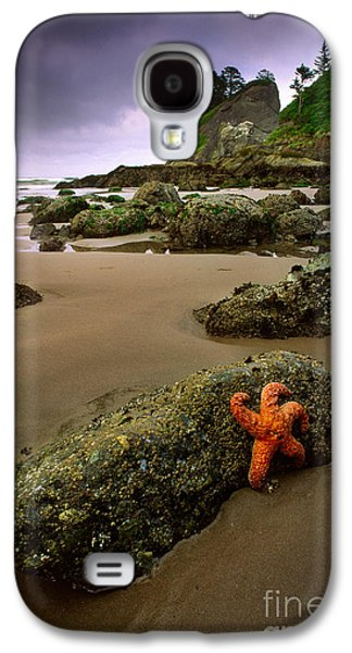 Starfish On The Rocks Galaxy S4 Case by Inge Johnsson