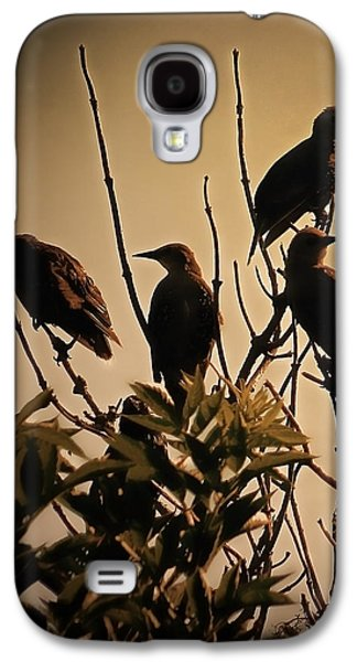 Starlings Galaxy S4 Case
