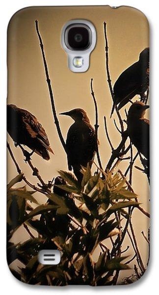 Starlings Galaxy S4 Case by Sharon Lisa Clarke