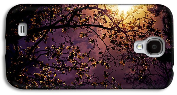 Stars In An Earthly Sky Galaxy S4 Case by Vivienne Gucwa