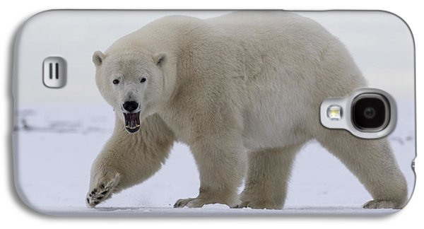 Stepping Out In The Arctic Galaxy S4 Case