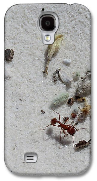Still Life With Red Ant Galaxy S4 Case by Feva Fotos