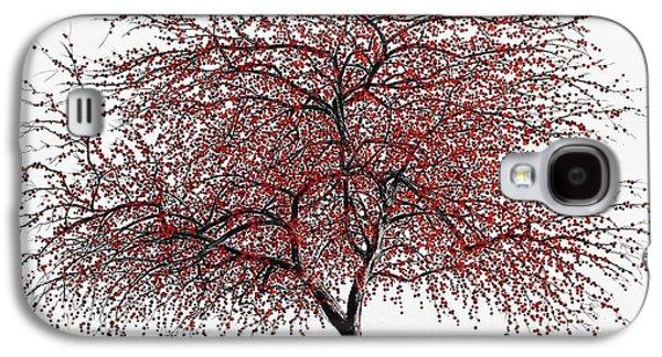 Study Of A Choke Cherry Tree Galaxy S4 Case by Glenn Boyles