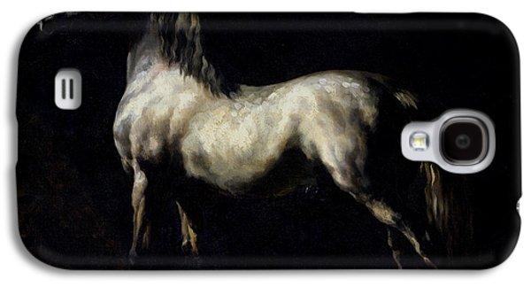 Study Of A Dapple Grey Galaxy S4 Case