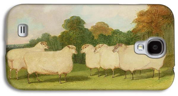 Study Of Sheep In A Landscape   Galaxy S4 Case