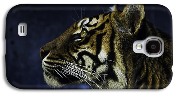 Sumatran Tiger Profile Galaxy S4 Case by Avalon Fine Art Photography