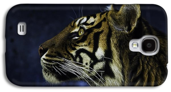Sumatran Tiger Profile Galaxy S4 Case