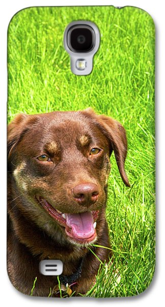 Summer Dog Galaxy S4 Case