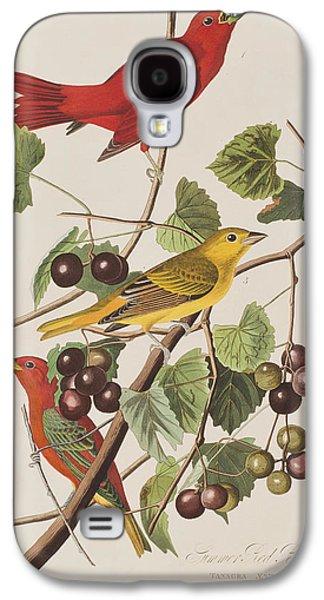 Summer Red Bird Galaxy S4 Case by John James Audubon