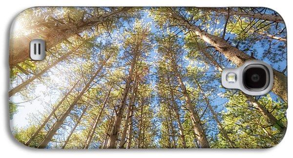 Sun Shining Through Treetops - Retzer Nature Center Galaxy S4 Case