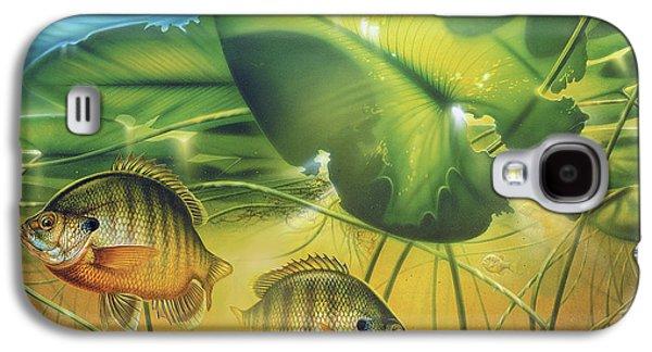 Sunbay Bluegill Galaxy S4 Case by Jon Wright