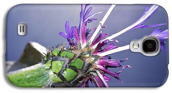 Sunburst Cornflower Galaxy S4 Case by Richard Brookes
