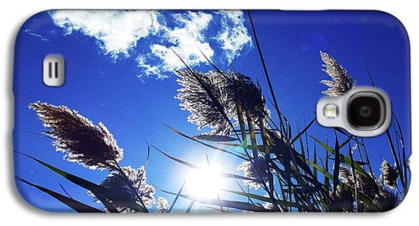 Sunburst Reeds Galaxy S4 Case
