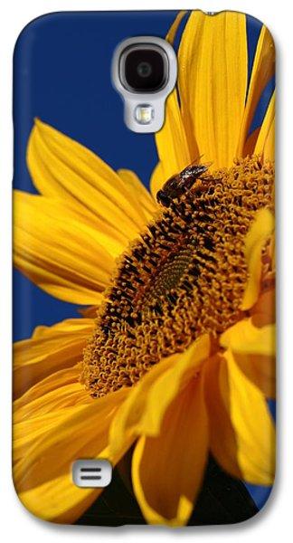 Sunflower Breakfast 2 Galaxy S4 Case