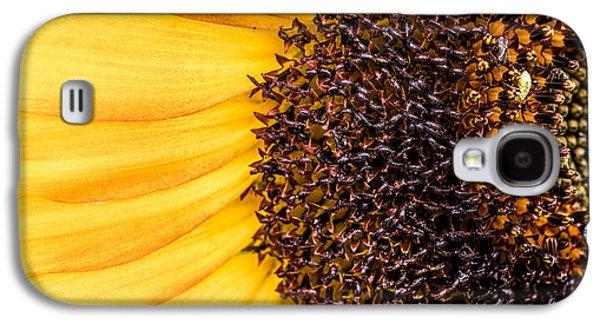 Sunflower Closeup Galaxy S4 Case by Bob Orsillo